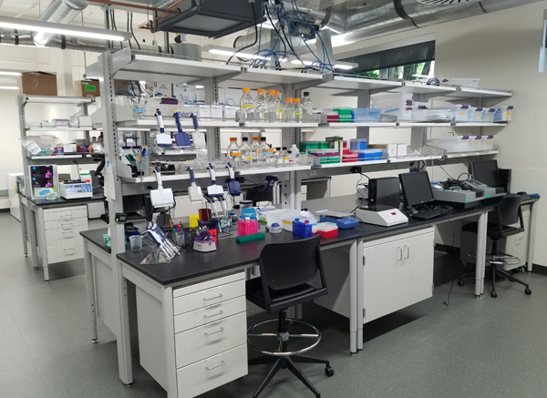 Global Health Biomarker Lab 2018 Pacific Hall
